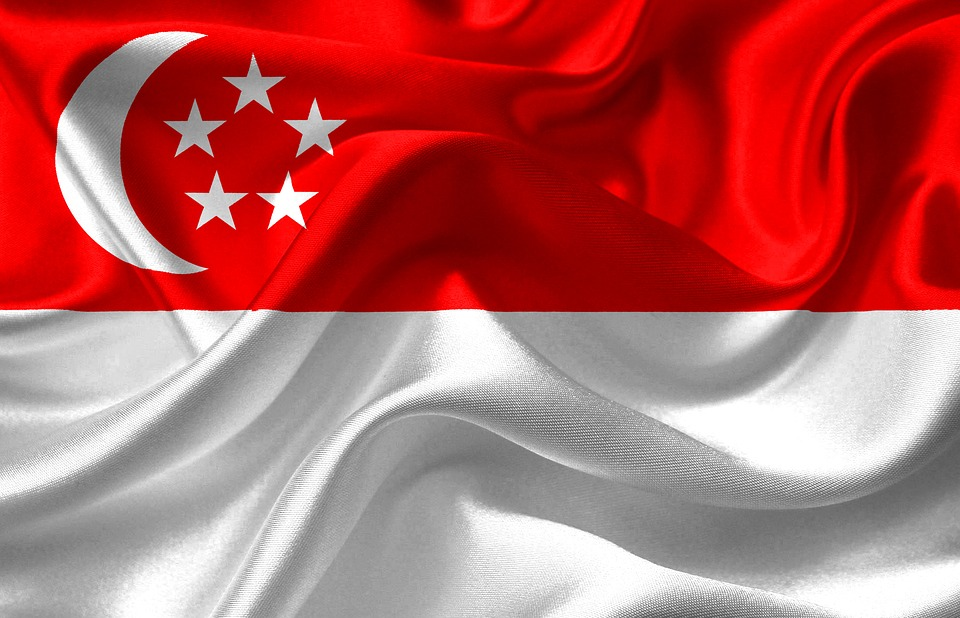 kisspng-flag-of-singapore-flag-of-singapore-telephone-numb-flag-of-singapore-5b27163c2b59c6.6135172915292882521776